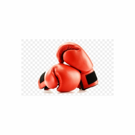 Boxing Trainig Gloves